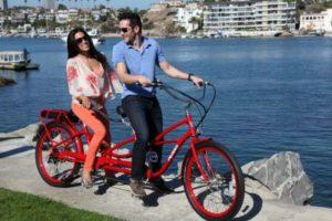 pedegeo-electric-bikes-branding
