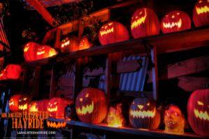 FINAL HD_pumpkins