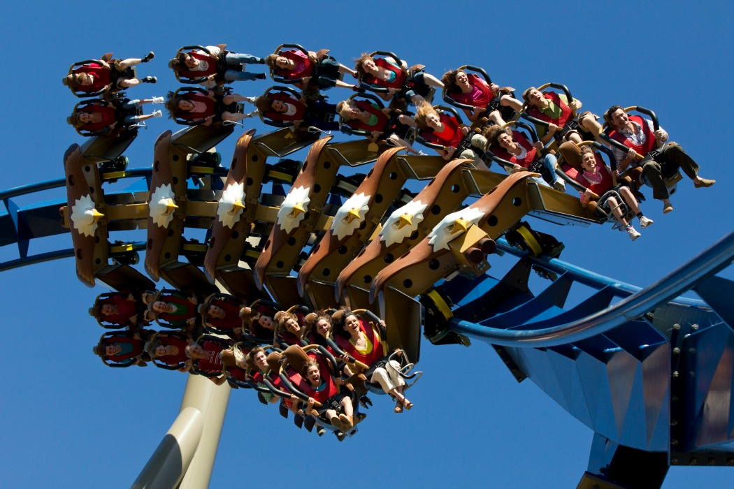 wild eagle roller coaster at Dollywood