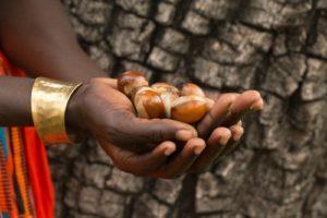 LXMI uganda